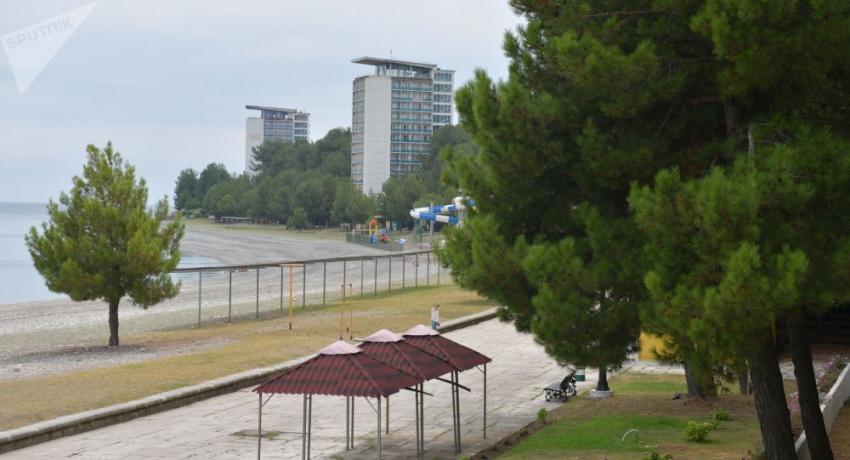 Дело поганок: тела мертвых птиц обнаружили на берегу в Пицунде